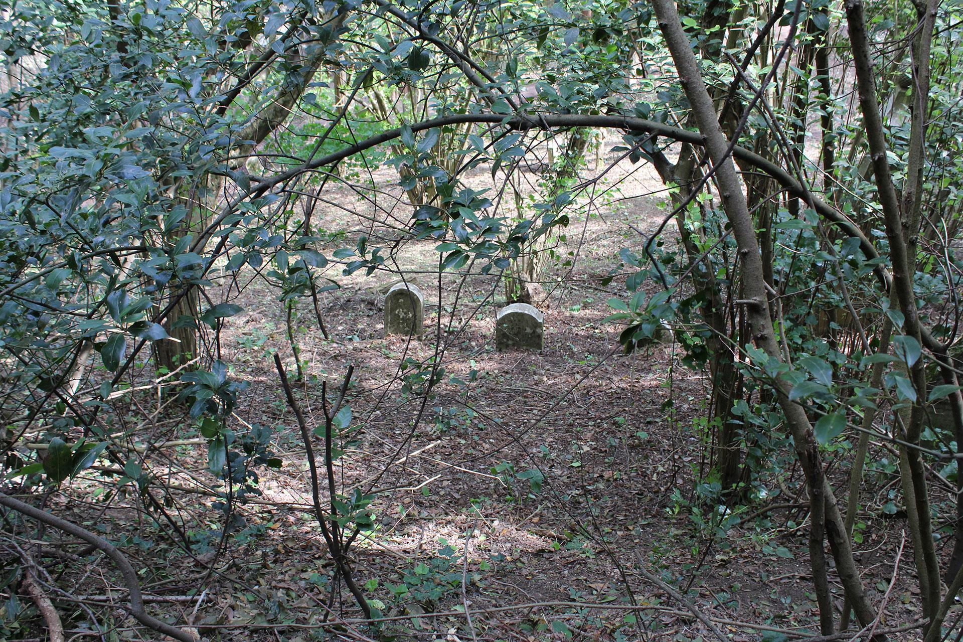 cimitero-siena-1